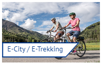 E City Trekking elektromos bicikli